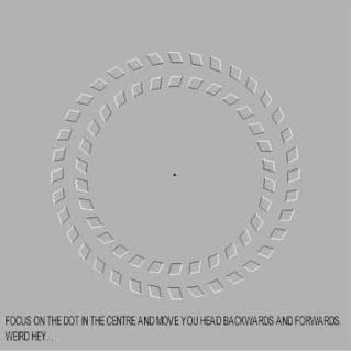 refleksi-mata-15.jpg-w=443&h=443