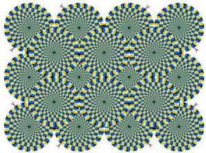 tipuan-mata-19.jpg-w=497&h=371